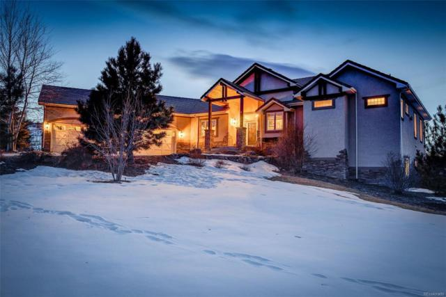 5045 Starry Sky Way, Parker, CO 80134 (#4663175) :: The Dixon Group
