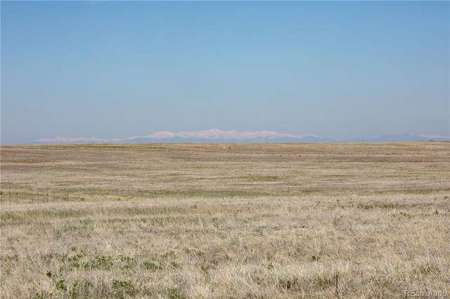 Commanche Creek Road, Kiowa, CO 80117 (MLS #4668359) :: Bliss Realty Group