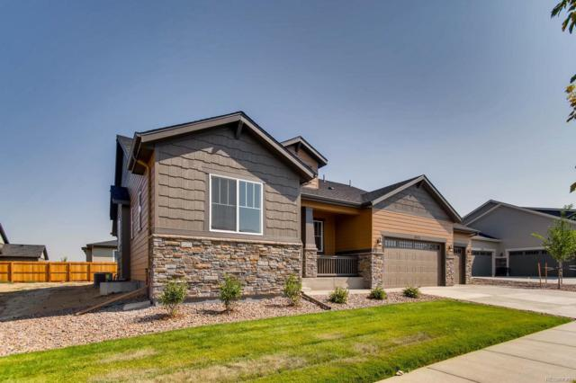 15983 E 114th Court, Commerce City, CO 80022 (MLS #4670235) :: The Space Agency - Northern Colorado Team