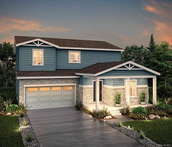2057 Villageview Lane, Castle Rock, CO 80104 (#4670414) :: The Dixon Group
