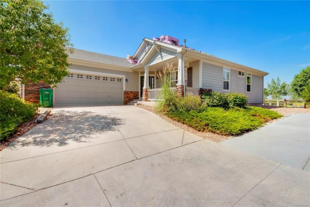 1431 Red Poppy Way, Brighton, CO 80601 (#4671441) :: The City and Mountains Group