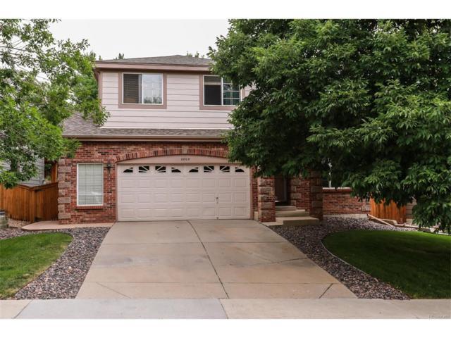 5905 Cheetah Chase, Littleton, CO 80124 (MLS #4672200) :: 8z Real Estate