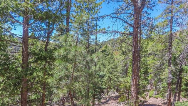 32654-1 Lodgepole Circle, Evergreen, CO 80439 (#4673761) :: The Peak Properties Group