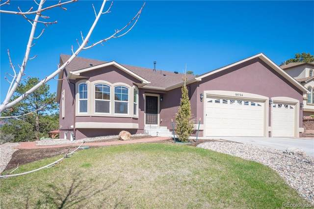 19734 Serenity Springs Point, Monument, CO 80132 (#4674651) :: Finch & Gable Real Estate Co.