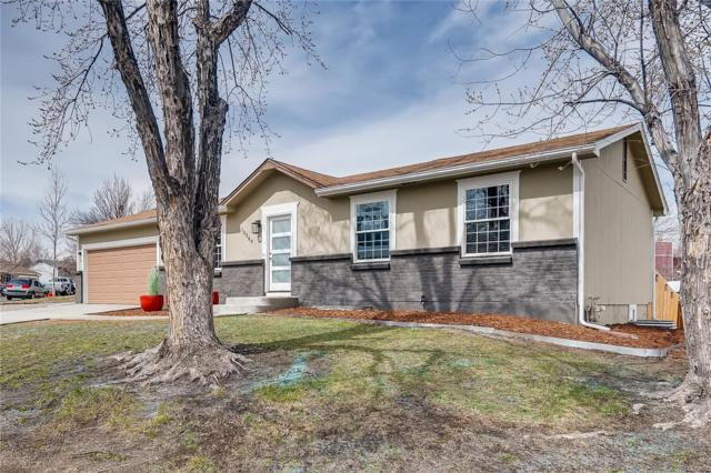 10389 Owens Circle, Westminster, CO 80021 (#4675660) :: The DeGrood Team