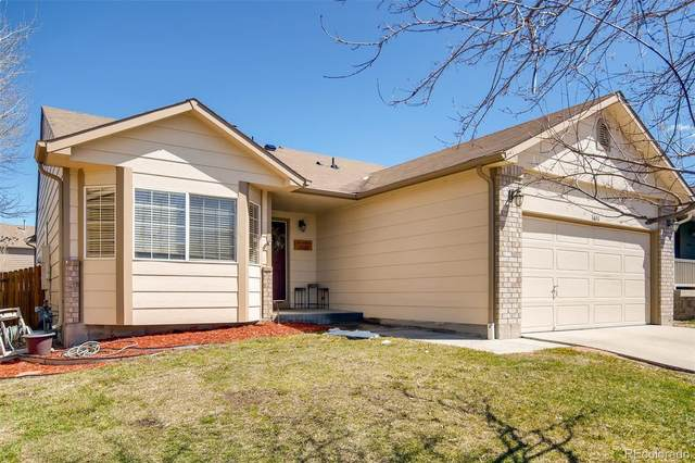 3651 Rawhide Circle, Castle Rock, CO 80104 (MLS #4676642) :: Bliss Realty Group