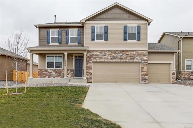 5965 High Timber Circle, Castle Rock, CO 80104 (#4677216) :: The Heyl Group at Keller Williams