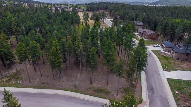 605 Chipmunk Drive, Woodland Park, CO 80863 (#4680095) :: Wisdom Real Estate