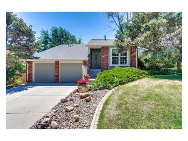 7905 S Roslyn Way, Centennial, CO 80112 (MLS #4681724) :: 8z Real Estate