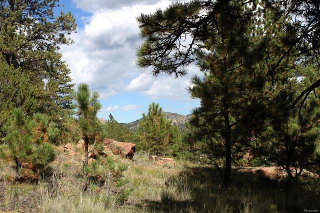 180 Shoshone Trail, Westcliffe, CO 81252 (#4682118) :: The Peak Properties Group