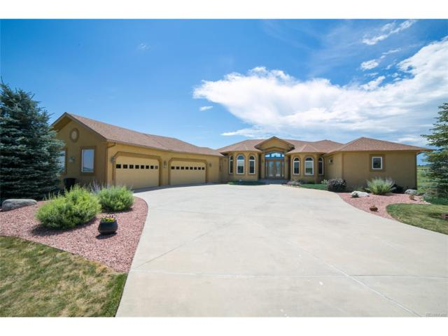 1853 Penny Royal Court, Monument, CO 80132 (MLS #4684211) :: 8z Real Estate