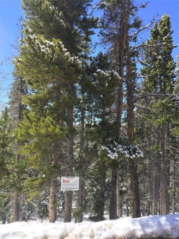 Harris Drive, Idaho Springs, CO 80452 (#4686728) :: The DeGrood Team