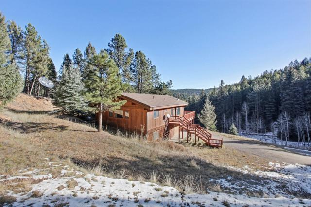 11943 Geronimo Trail, Conifer, CO 80433 (#4688399) :: Berkshire Hathaway Elevated Living Real Estate