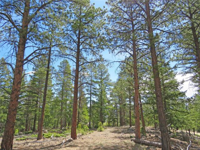 Aspen Turn, Buena Vista, CO 81211 (#4692099) :: House Hunters Colorado