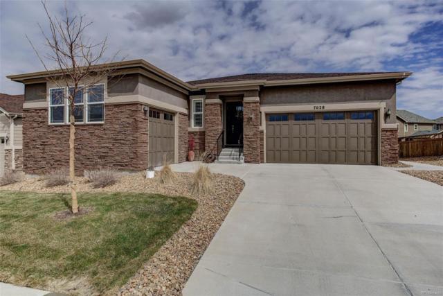 7028 Thundercloud Court, Castle Rock, CO 80108 (#4697278) :: Compass Colorado Realty