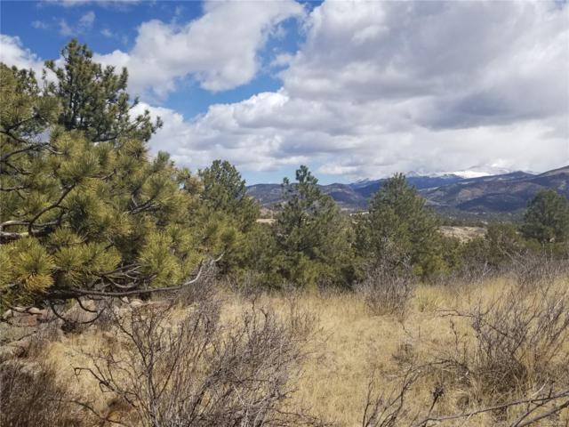 325 Apache Trail, Florissant, CO 80816 (#4698038) :: Bring Home Denver