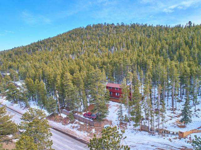370 S Peak To Peak Highway, Nederland, CO 80466 (#4700076) :: The DeGrood Team