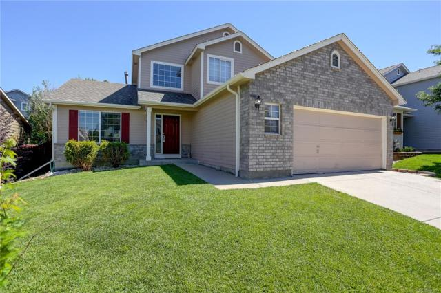 951 Quarterhorse Trail, Castle Rock, CO 80104 (#4700477) :: The HomeSmiths Team - Keller Williams