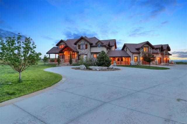 7663 Buffalo Trail, Castle Pines, CO 80108 (#4702344) :: The HomeSmiths Team - Keller Williams