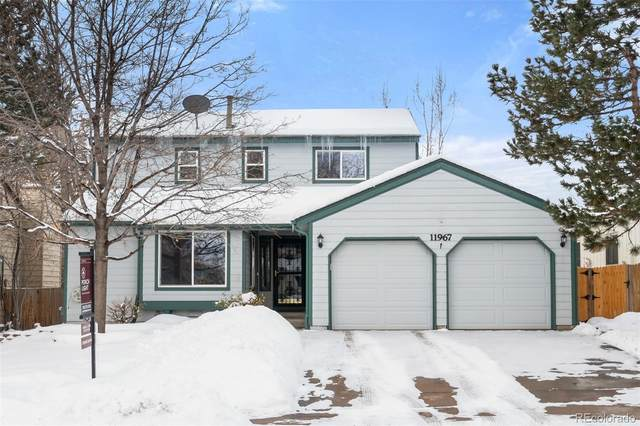 11967 Blacktail Mountain, Littleton, CO 80127 (MLS #4705565) :: 8z Real Estate
