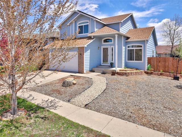 8361 Andrus Drive, Colorado Springs, CO 80920 (#4706557) :: The DeGrood Team