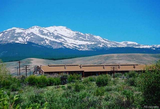 5973 Us-24 Highway #21, Leadville, CO 80461 (#4708572) :: The Healey Group
