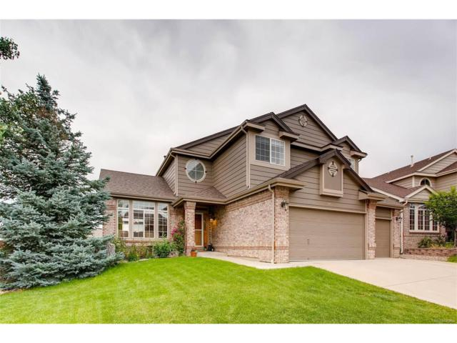 5465 Knoll Place, Highlands Ranch, CO 80130 (MLS #4712129) :: 8z Real Estate