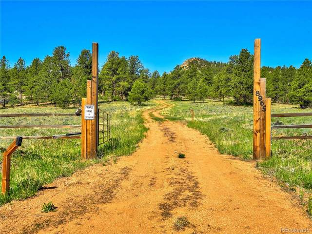 8965 County Rd 1, Florissant, CO 80816 (MLS #4712655) :: 8z Real Estate