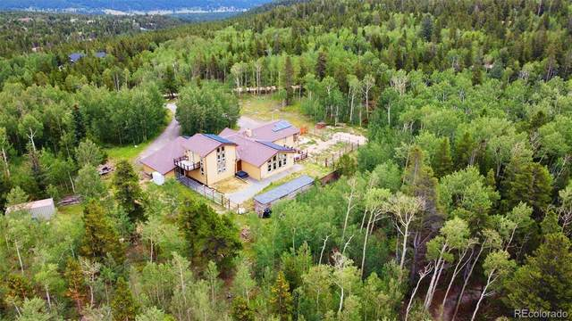 970 Golden Gate Canyon Road, Black Hawk, CO 80422 (MLS #4713062) :: 8z Real Estate