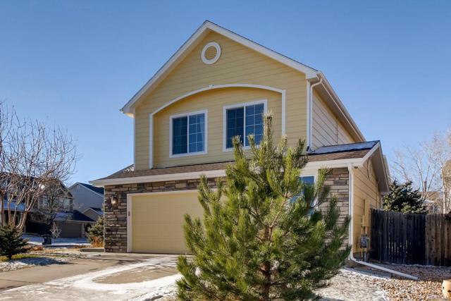 5576 Lost Meadow Trail, Castle Rock, CO 80104 (#4716052) :: Sellstate Realty Pros