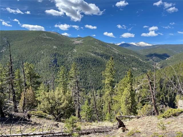 Ute Creek Road, Idaho Springs, CO 80452 (#4718892) :: James Crocker Team