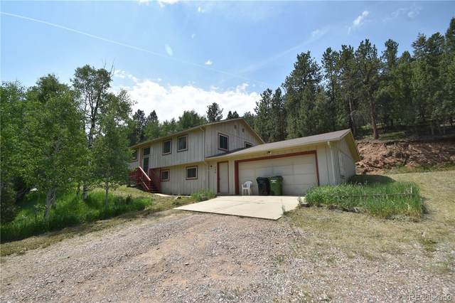 230 Brookside Drive, Bailey, CO 80421 (#4719508) :: The Colorado Foothills Team | Berkshire Hathaway Elevated Living Real Estate