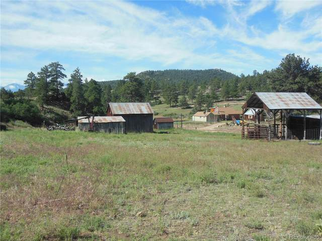 1651 Bird Point Drive, Cotopaxi, CO 81223 (MLS #4719563) :: Bliss Realty Group