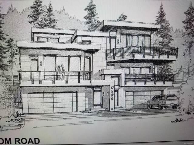286 N Fuller Placer Road, Breckenridge, CO 80424 (#4720571) :: Wisdom Real Estate