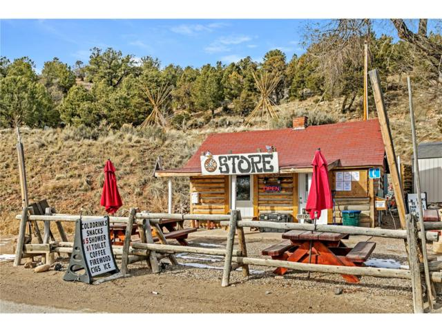 127 Trough Road, Bond, CO 80423 (#4733801) :: Wisdom Real Estate