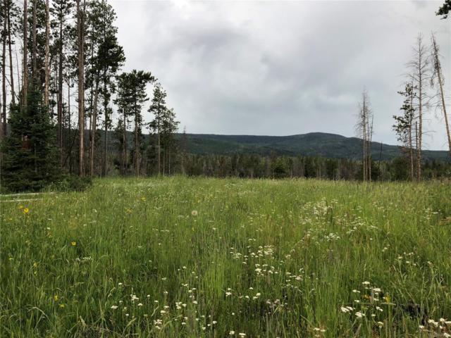 Stirrup Trail, Oak Creek, CO 80467 (#4734460) :: The Margolis Team