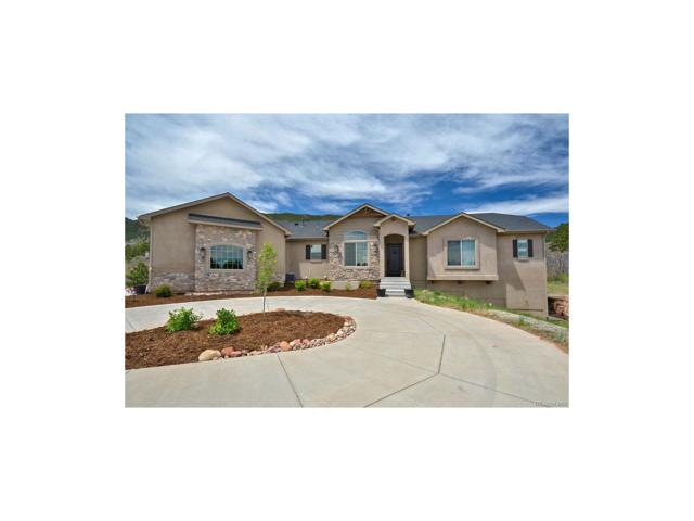 4591 Red Rock Ranch Drive, Monument, CO 80132 (MLS #4735925) :: 8z Real Estate