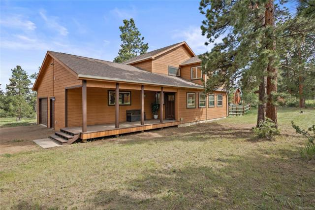 16 Fawn Road, Bailey, CO 80421 (MLS #4735938) :: Bliss Realty Group