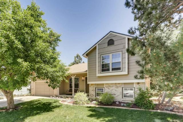 8702 Aspen Circle, Parker, CO 80134 (#4737200) :: The Healey Group