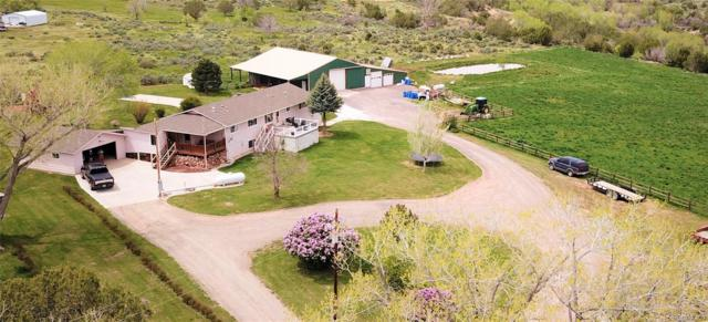 11100 3150 Road, Hotchkiss, CO 81419 (#4740387) :: HomePopper