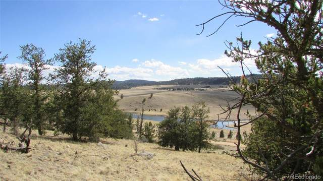 32 Yellowstone Road, Hartsel, CO 80449 (MLS #4753474) :: Bliss Realty Group