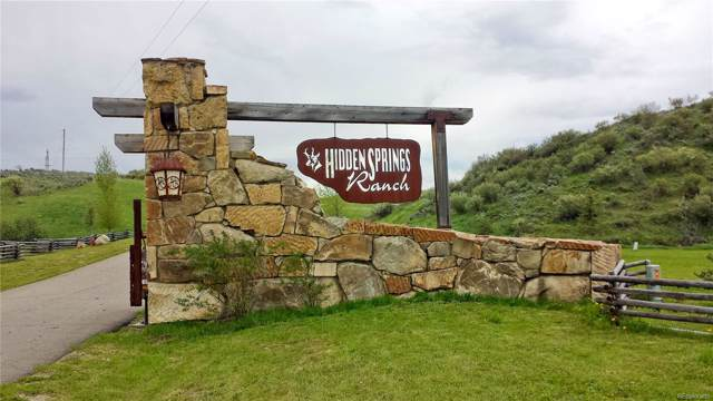 38750 Hidden Springs Drive, Hayden, CO 81639 (#4755173) :: The Healey Group