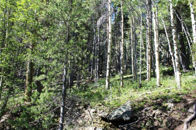 700 Long Road, Idaho Springs, CO 80452 (MLS #4756177) :: Kittle Real Estate