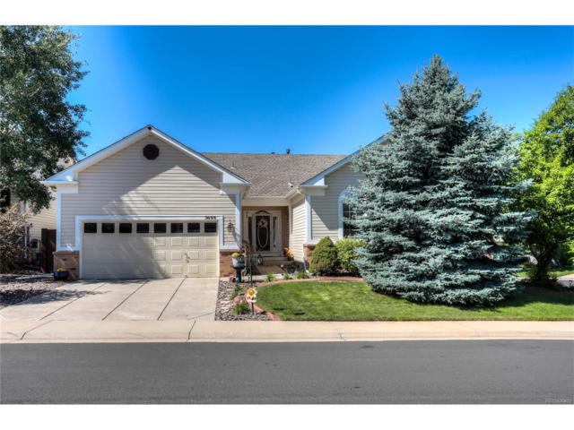 3698 Buffalo Grass Lane, Castle Rock, CO 80109 (#4756324) :: The Sold By Simmons Team