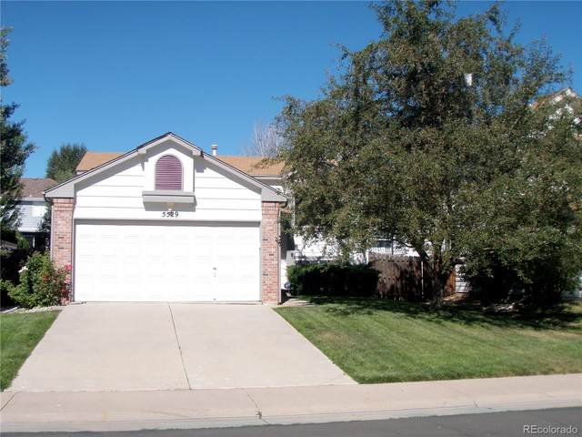 5529 S Youngfield Way, Littleton, CO 80127 (MLS #4760804) :: 8z Real Estate