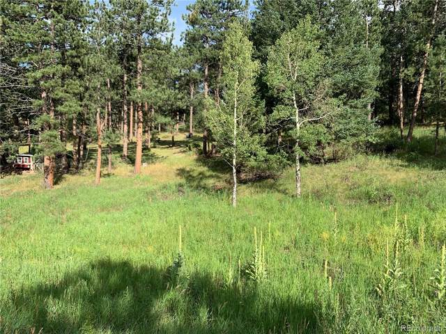 5680 Cliff Road, Evergreen, CO 80439 (MLS #4762958) :: 8z Real Estate