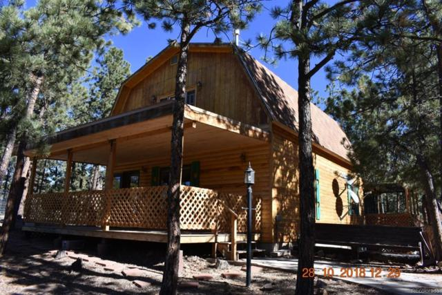 92 Humbolt Lane, Westcliffe, CO 81252 (MLS #4764608) :: 8z Real Estate