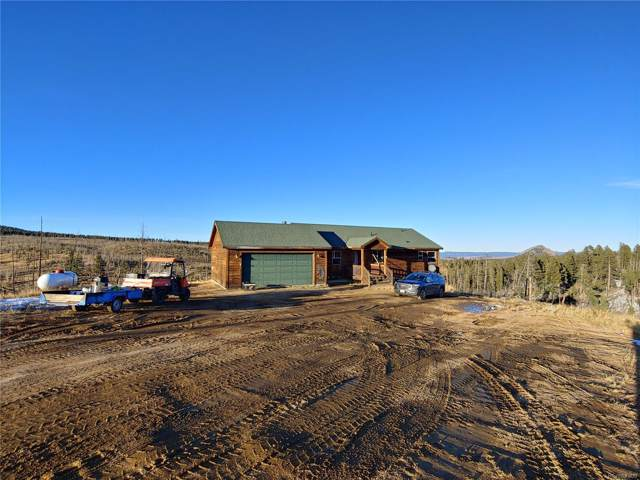 10398 County 51 Road, Divide, CO 80814 (MLS #4765201) :: 8z Real Estate