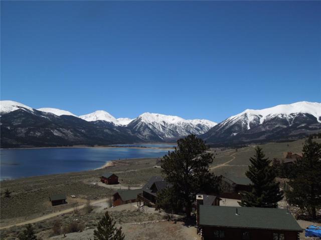 294 Twin Peaks Drive, Twin Lakes, CO 81251 (MLS #4766299) :: 8z Real Estate