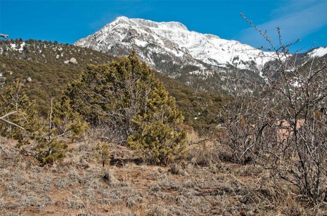 866 Pine Cone Way, Crestone, CO 81131 (MLS #4768484) :: 8z Real Estate